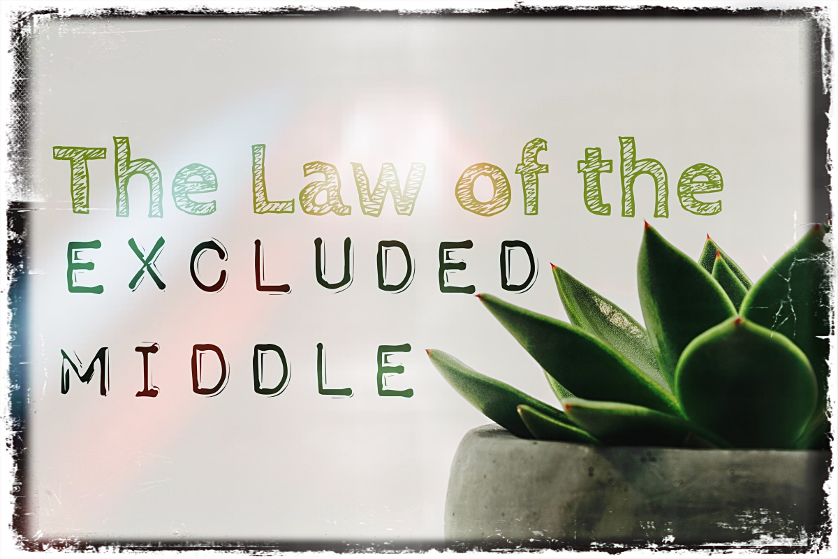 Series on Logic Part Four – Excluded Middle